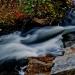 10Acadia National Park-5814