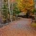 12-Acadia National Park-5861