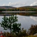 43-Acadia National Park-5888