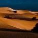 Mesquite_Dunes_1030
