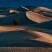 Mesquite_Dunes_1980