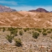 Stovepipe_Wells_Mountain_View_1210