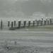 hurricane-irene-barrington-01487