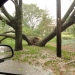 hurricane-irene-barrington-01508