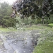 hurricane-irene-barrington-01511