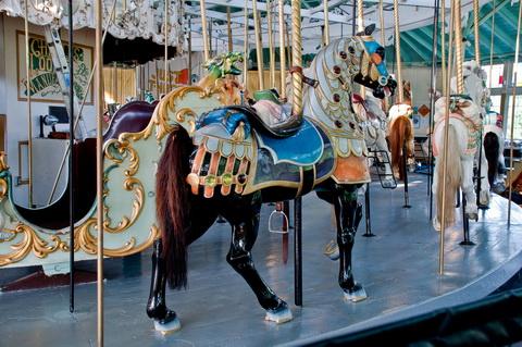 Carousel horse closeup 6037