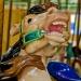 Carousel horse closeup 6124