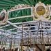Carousel view of the top 6131