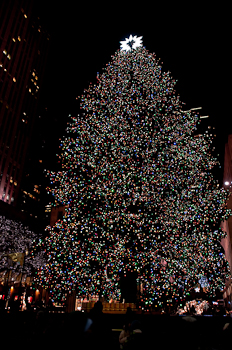2740 Rockerfeller Christmas tree