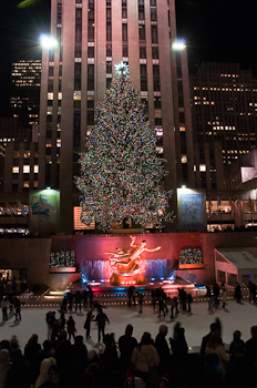2760 Rockerfeller Christmas tree