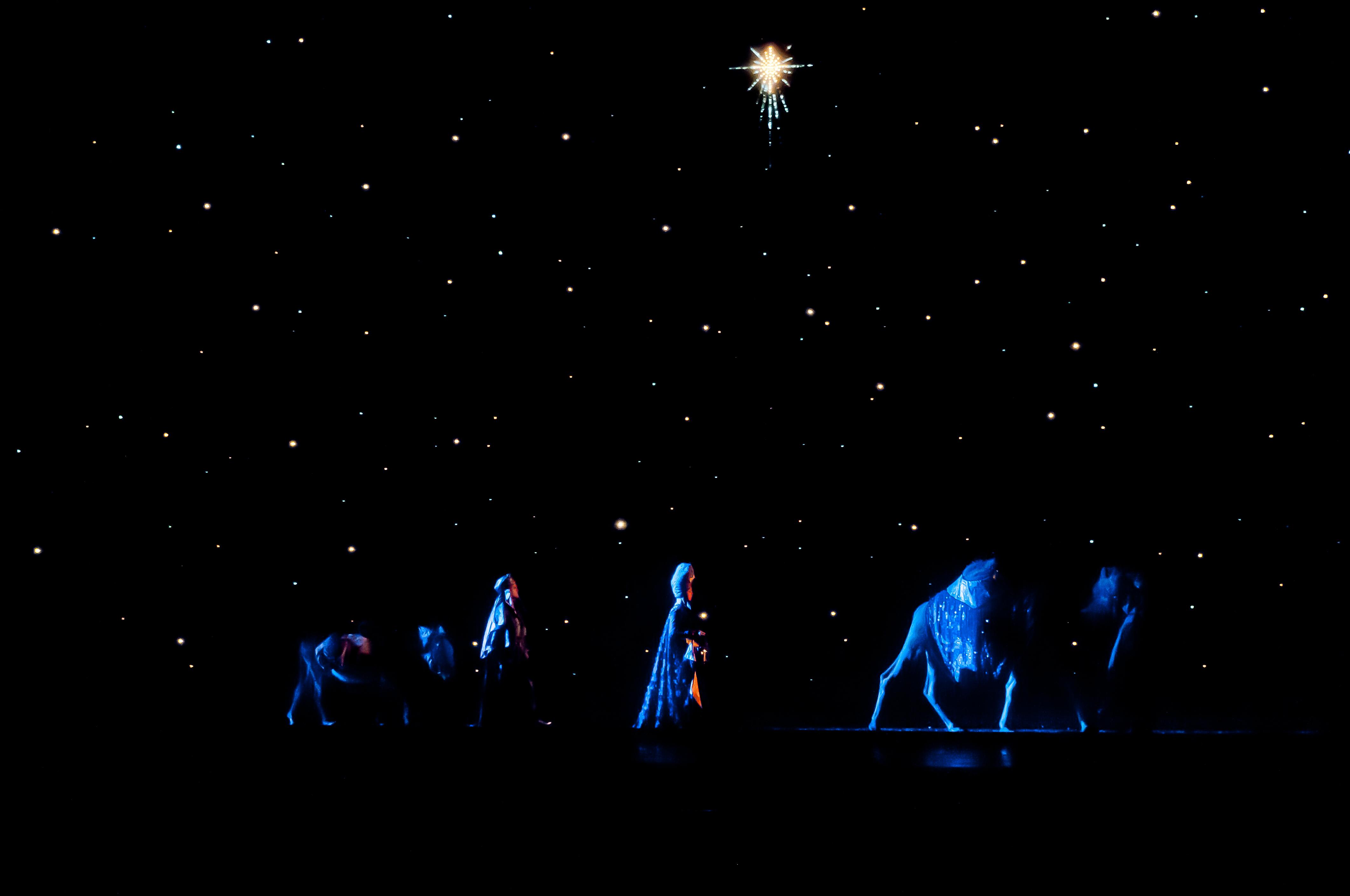 5135_Christmas Spectacular Nativity