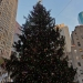 1011 New York City sites Rockefeller Center Tree