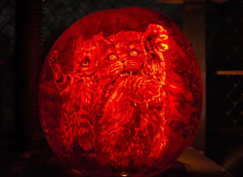6104_Carved_Pumpkins_RWP