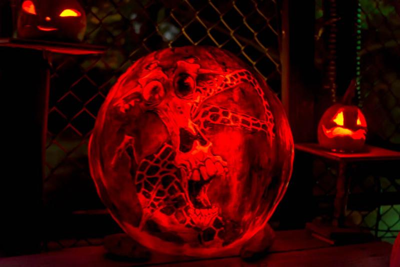 6105_Carved_Pumpkins_RWP