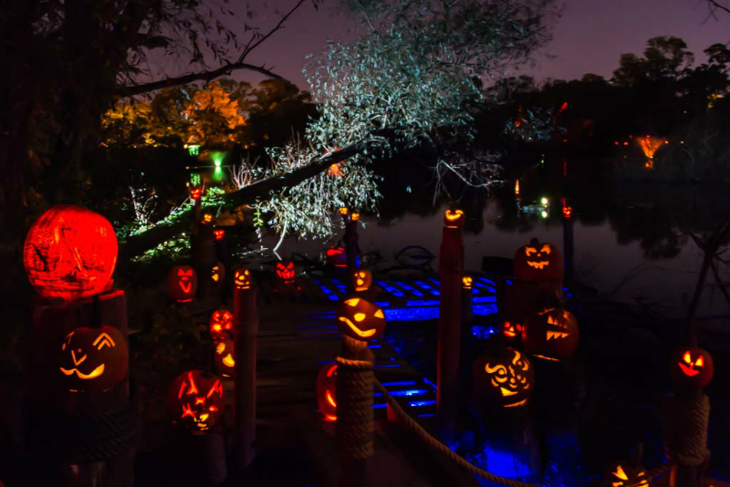 6151_Carved_Pumpkins_RWP