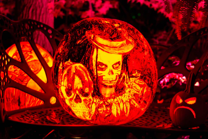 6156_Carved_Pumpkins_RWP
