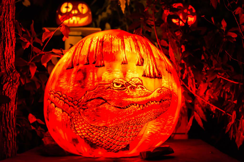 6167_Carved_Pumpkins_RWP