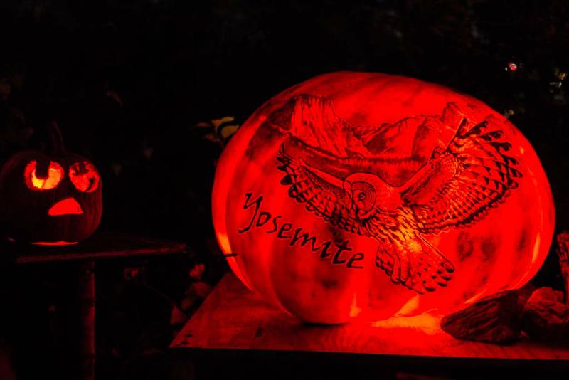 6200_rwp_pumpkins_201310018