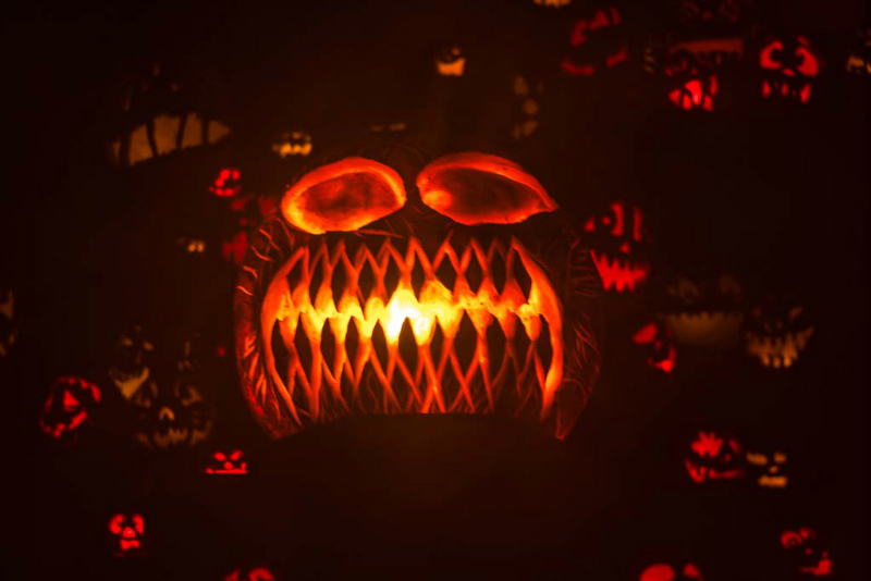 6271_rwp_pumpkins_201310018