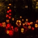 6099_Carved_Pumpkins_RWP