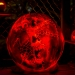6105_Carved_Pumpkins_RWP