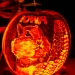 6120_Carved_Pumpkins_RWP