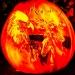 6209_rwp_pumpkins_201310018