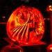 6213_rwp_pumpkins_201310018