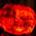6222_rwp_pumpkins_201310018