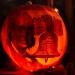 6230_rwp_pumpkins_201310018