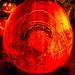6246_rwp_pumpkins_201310018