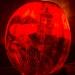 6251_rwp_pumpkins_201310018