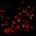 6266_rwp_pumpkins_201310018