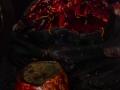 2107_Salem_Halloween_20141025