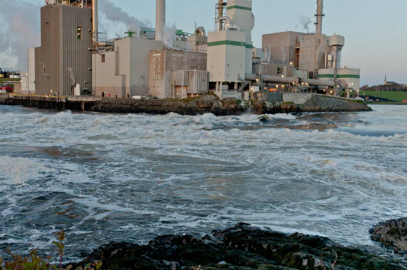 St Johns Reversing Falls Prior to tide change 2