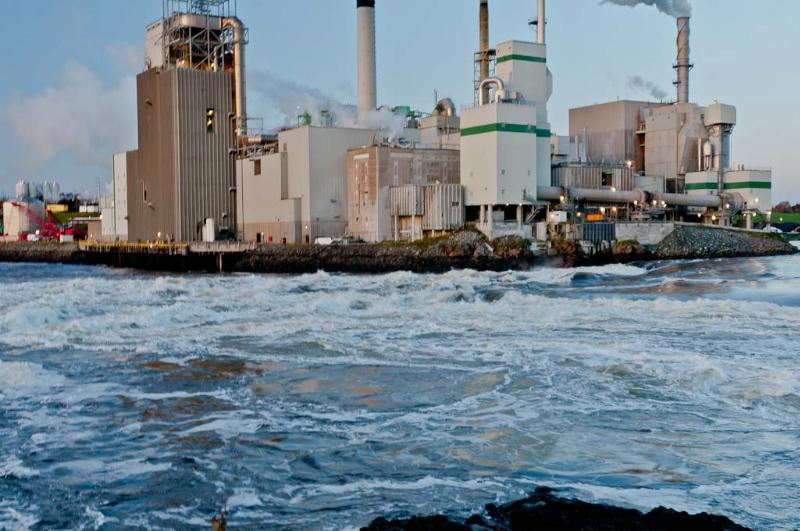 St Johns Reversing Falls Prior to tide change 4