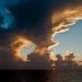 sunrise_cruise_ncl_ny_gem_2631