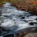 09-Acadia National Park-5813
