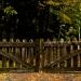 49-Acadia National Park-1252-a