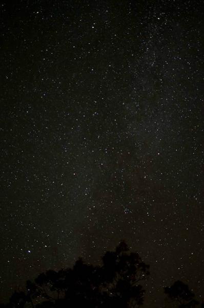 119-Bar Harbor stars_5781
