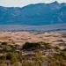 Mesquite_Dunes_1070