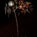 Providence fireworks 2012_9835