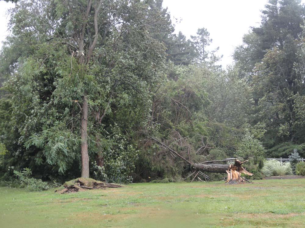 hurricane-irene-barrington-01514