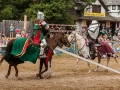 6238 King Richards Faire 08312014