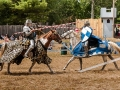 6245 King Richards Faire 08312014