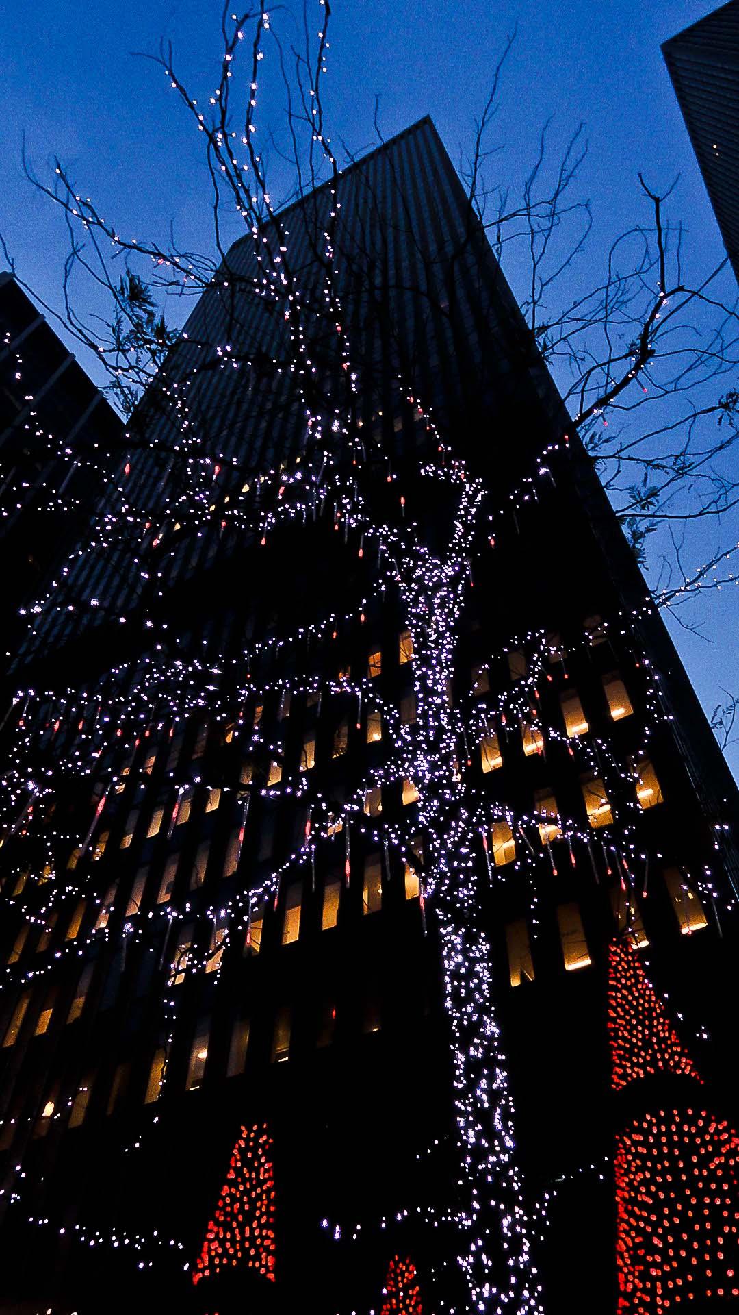 0001 New York City sites at Christmas