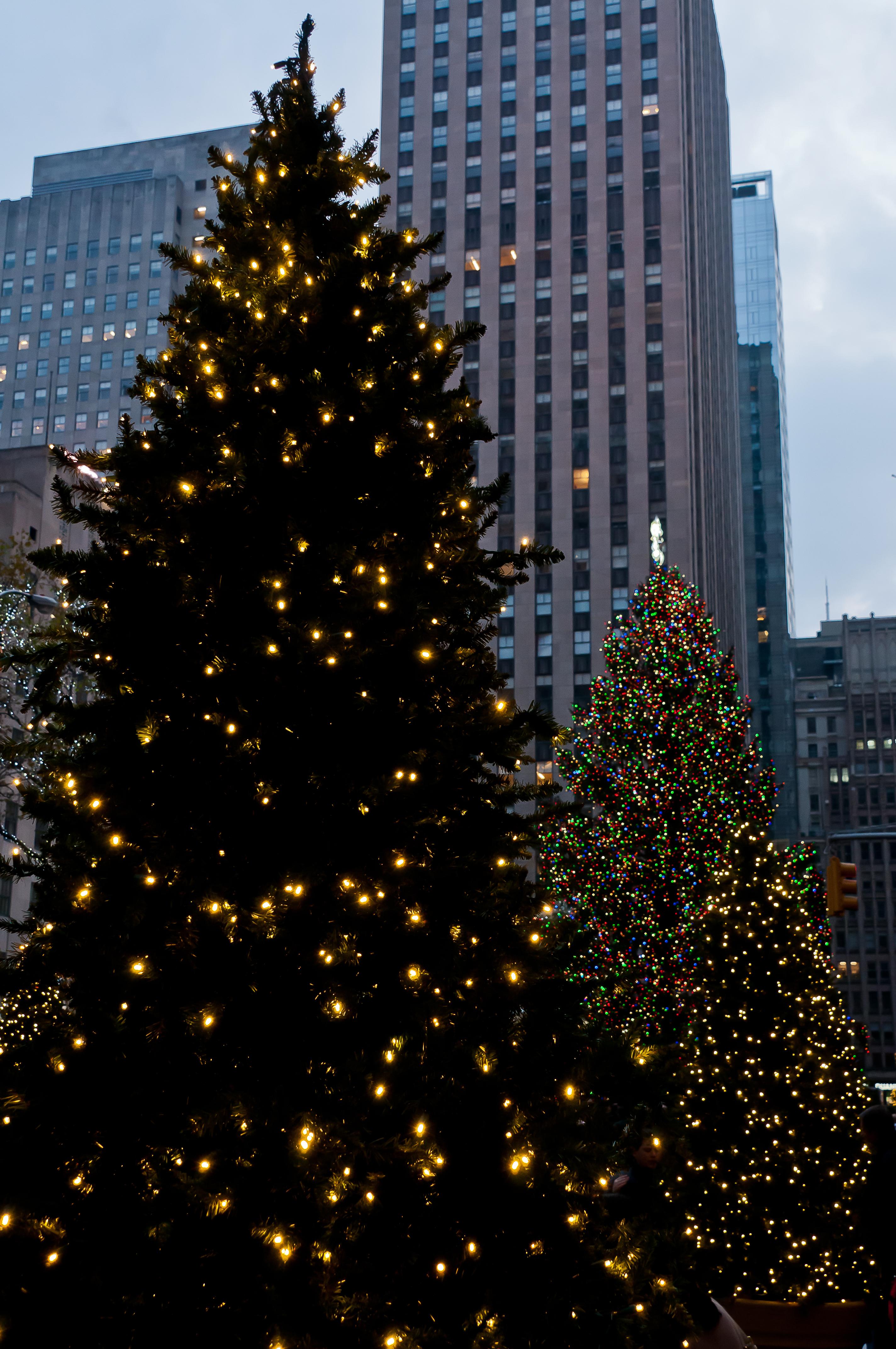 0008 New York City sites Rockefeller Center Tree