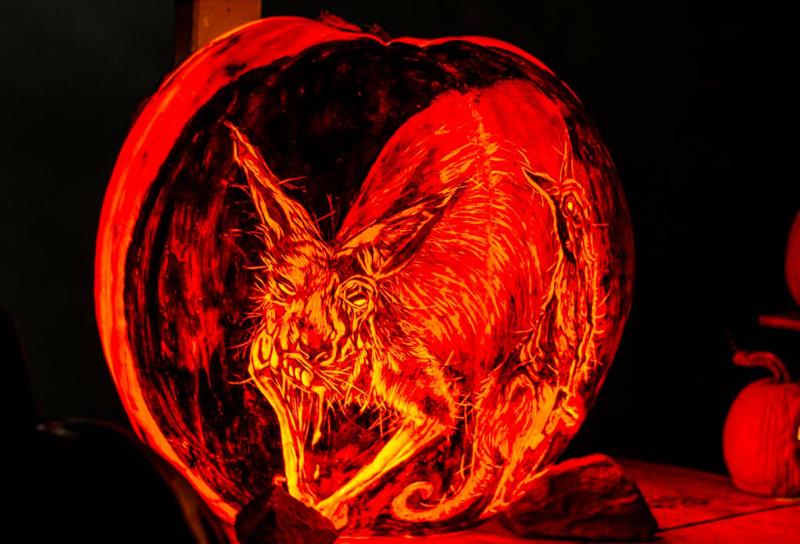 6101_Carved_Pumpkins_RWP