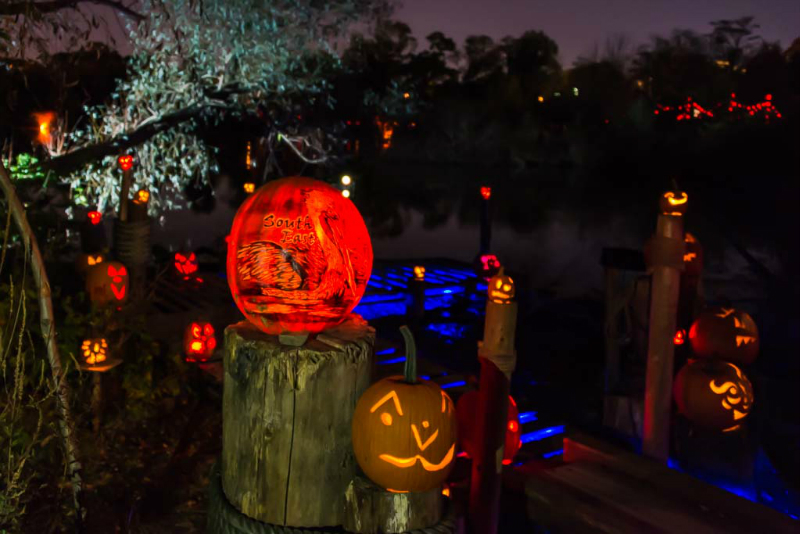 6149_Carved_Pumpkins_RWP