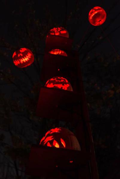 6193_rwp_pumpkins_201310018